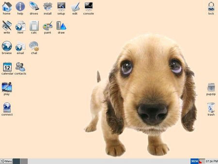 http://www.desktoplinux.com/files/article118/The_Main_Puppy_Screen-sm.jpg